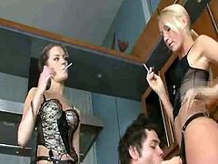 Adult web site girls engulf their own nipples.the man who fucked Angel Cummings.