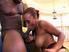 See the intense slut temptress Cassidy Clay devouring her man's thick black dong while assuming very hot poses.