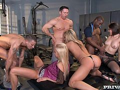 Amy Brooke, Bobbi Starr and Carla Cox are having some good time with their BFs in the locker room. The girls play with each other's holes and then jump on the dudes' hard pricks.