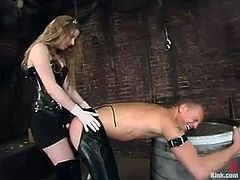 There's some pretty fucked up clothespin torture in this video where the guy also has to take a strapon ass fucking from Princess Kali.