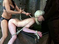 Check out Isis Love fucking Cherry Torn with her strapon dildo and using ropes as she was actually riding her like a wild mare!