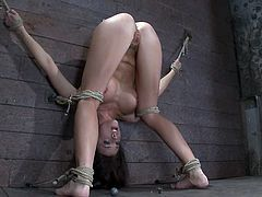 Ropes are used in such a way that leave Chanel Preston's head between her legs while standing up and with her arms risen up. She's totally exposed.