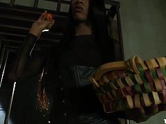 The mysterious shemale Toya wakes up Jason, by throwing fruits and vegetables in him. Then she lures the guy, whereupon he finds himself chained and at her feet. Toya is a superb shemale, tall and with long dark hair, she demands complete obedience from him and satisfaction too. Watch her fucking his mouth and much more
