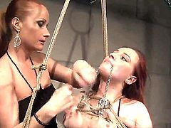 Attractive long haired bitch Katy Parker with sexy ponytail and dark heavy make up tortures tied up redhead Kyra with natural tits and big ass in memorable bondage fantasy.