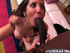 Two horny white candies Jessica Right and Kelly Devine were about to have some lesbian fantasies, when this black dude comes it. They literally attack his huge cock with their mouths!