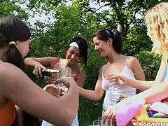 Handsome female football team coach is training girls on a field outdoor. They all later have a picnic outdoor. Girls drink much alcohol so guys plan to screw them in group sex action.