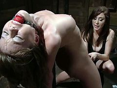 Gorgeous Capri Anderson gets whipped and toyed hard