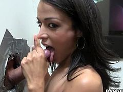 Latina Layla Sin sucks a dick at the gloryhole
