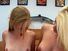 Provocative slutty teen blondes Avril Hall and Marissa with natural boobies and slim sexy bodies get naked and make out before sharing stiff meaty sausage in pint of view.
