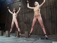 A blonde and an auburn-haired chicks are going to get their pussies toyed in this bondage video where they go through some very kinky BDSM experiences.
