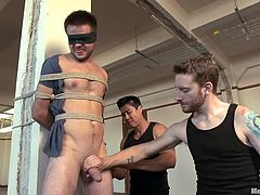 James Riker lets his blue buddies tie him up and play with his prick. The gays please James with an awesome handjob and make him moan loudly with pleasure.