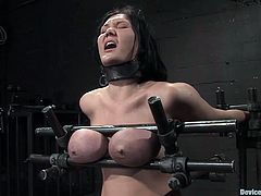 A big titty whore gets trapped with bondage devices and they toy with her fun bags, hit play and fucking check it out! It's hot!