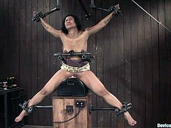 The exotic chick with tattoos and natural tits is getting tied and bounded in this bondage video where she's forced to ride a sybian without containing her orgasms.