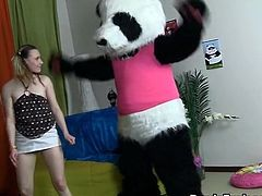 Teddy bear close to the pink sex toy get laid honey
