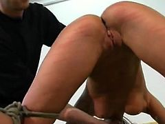Nice collection of masochism smut movs from Brutal Punishment
