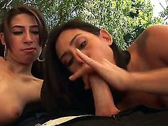 Exciting hotties Allie Jordan and Raylene are going to play with big dick of handsome fellow. Check up girls sucking the big throbbing penis both at one moment.