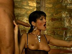 Brunette hottie in fishnet bodysuit gets her pussy licked and fingered. After that she gets fucked in her ass and pussy at the same time.