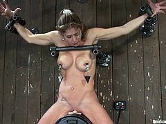 Busty chick tied on top of a Sybian saddle