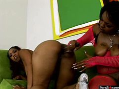 Dark-skinned lesbian hotties fuck each other with dildos