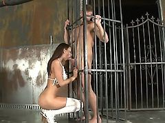 Kayte is so damn good at sucking cock, that no obstacle can stand in her way -- not even an iron-rod fence. Dont believe me Then watch this spectacular footage, my friends.