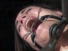 Stunning Amber gets undressed and tied up in a basement. After that she gets her ass and vagina drilled with a dildo.