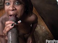 Amile Waters is one hot ebony who likes having her pussy nailed right in hardcore