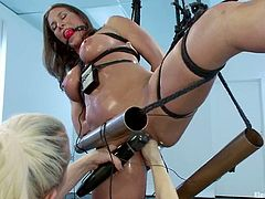 The busty brunette Ariel X is tied and toyed in this lesbian bondage femdom action video by Lorelei Lee.