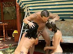 Old and young brunette prostitutes get called up by insatiable fucker. They give his meaty dick a double blowjob before riding him reverse cowgirl in turns in peppering threesome sex video by 21 Sextury.