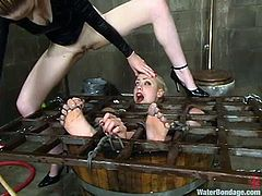 Tied up Lorelei Lee gets her pussy whipped by another blonde chick. After that Lorelei gets dipped in water.