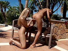 A brunette and a blonde are here together having lesbian sex on a bench and enjoying the beautiful summer day.