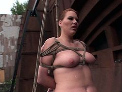Sizzling hot brunette domina in raunchy sheer black lingerie and stockings makes out with a submissive ample red-haired amateur. She hangs her in the air bandaged before she starts mauling her curvy body in lesbian sex video with BDSM elements by 21 Sextury.