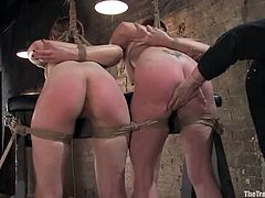 Captivating chick Sarah Shevon and her friend Sabrina Fox are getting naughty with Maestro indoors. They let the man tie them up and enjoy getting their butts whipped and fingered.