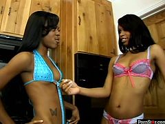Salty black lesbians tongue fuck each other's tasty pussies