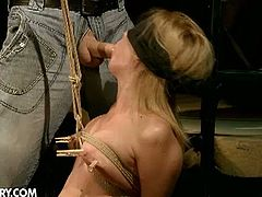 Safira White is a gorgeous blonde belle ready to mix pain and pleasure. Watch the vicious temptress getting blindfolded and tied up by her master before her tortures her a bit. Then it's time for her ass to be banged balls deep into a massive anal orgasm.
