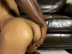 Marie Luv has got fine shape but ugly face. She kneels down sucking hard big black cock deepthroat. Then she is penetrated in her twat in missionary position.