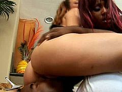 Two slutty chics makes out with a horny black wanker. Sizzling red-haired gives him face sitting while a bootyful black slut rides his meaty cock in cowgirl style in threesome sex orgy by Pornstar.
