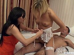 Ionie Luvcoxx, Suzie Best and some guy are having some fun together. The blonde and the man have oral sex and bang in cowgirl and other positions and the brunette is busy filming them with a camera.