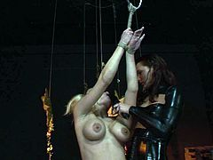 Dude, you're more than welcome to enjoy this hot like hell 21 Sextury xxx clip. Kinky blondie with huge boobies is tied up with ropes. Curvy nympho moans and brunette takes a black dildo to plug it into her small mouth.