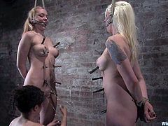 So, Lorelei Lee is back to torture bitches. She ties them up and suspends them on the ceiling. Then Lorelei twitches their skin and then wires their twats!