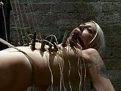 Lorelei Lee the kinky blonde babe undresses and then gets hog tied. Later on Isis Love fixes lots of clothespins to Lorelei's body.