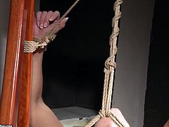 Dude, you're more than welcome to enjoy this really hot 21 Sextury femdom sex clip. Horny brunette ties up with ropes spoiled bootylicious blondie to the ladder, jams her tits and rubs her wet pussy.