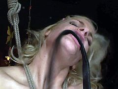 Kinky blondie is the owner of big boobies. Spoiled chick gets tied up with ropes and horny brunette pins her nipples with some metal stuff. Check out curvy long legged dykes in 21 Sextury xxx clip to jack off and jizz at once!