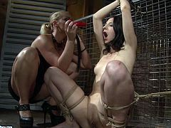 Dominant perverted blondie in black dress goes wild. This bitch ties up brunette nympho with ropes, fixed her hands to prison bars and then rubs her wet pussy madly right in the dark prison cell.