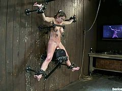 Immobilized on the wall with metal bars whore Felony is about to have a nice ride with us. The executor grabs her pretty neck and holds her firmly, as the rodeo sex machine rubs her pussy. She moans and enjoys the punishment. The weight attached on her nipples and the sex machine blend in her pain and pleasure.