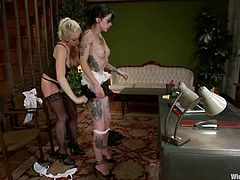 Tattooed brunette chick gets undressed and tied up by Lorelei Lee. Later on Krysta gets tortured with clothespins and fisted in a basement.