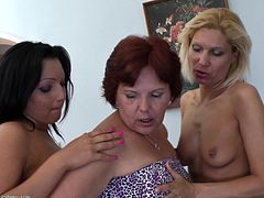 Things are really getting hot and heavy on that couch, a mature lesbian is busy with her younger blonde one, while the youngest of them is on an armchair masturbating. Soon the whores start kissing each other and it's just a matter of time, until they will act dirty, just the way we like to watch them