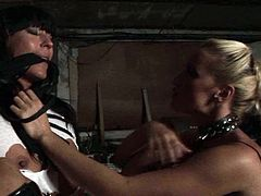 This scorching mistress knows her job well. She puts her skills to the test giving every kind of kinky torture to this spoiled brunette wench. Make sure you don't miss this hot BDSM sex video!