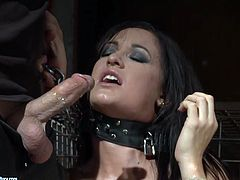 Horny bondage master grabs his slave by her hair and forces his penis into her mouth. She sucks that rock hard erection greedily as if her life depends on it.