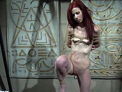 Small titted red-haired doxy gets suspended to the ceiling with a collar on her neck before an insatiable domina starts pinching her skinny body with clothing pegs in BDSM-involved sex video by 21 Sextury.