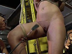 This brown-haired honey must have done something very bad. This chick is the full package! She has a lovely set of big luscious tits and a fine ass that's just begging to get whipped hard. Cruel mistress knows how to teach this slut some good manners. He binds her in ropes to ensure she can't escape.